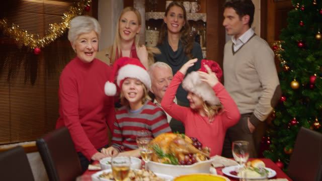 family posing for a funny christmas picture - large family stock videos & royalty-free footage