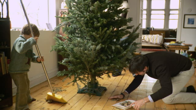 ms family preparing christmas tree, father and son (2-3) cleaning floor around christmas tree / new york city, new york, usa - christmas tree stock videos & royalty-free footage