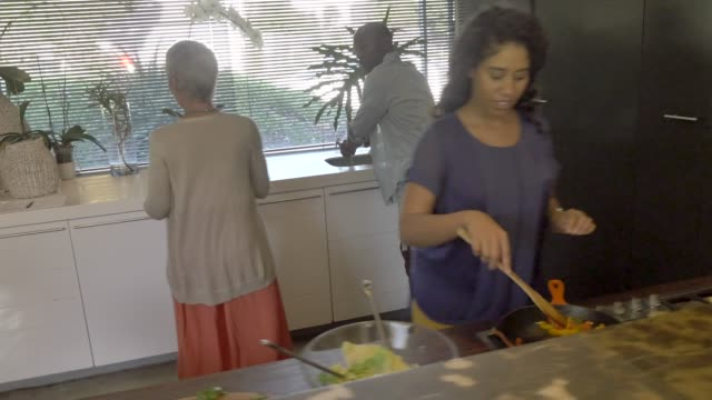 family preparing food during reunion - mixed race person stock videos & royalty-free footage