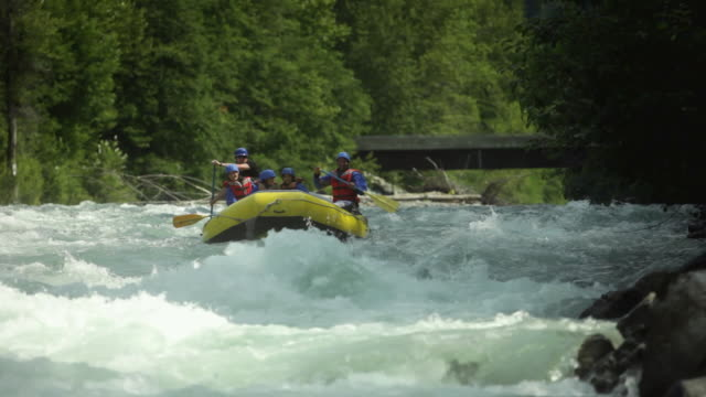 ws pan family rafting with guide through rapids in squamish river forest / squamish, british columbia, canada - rafting stock videos and b-roll footage