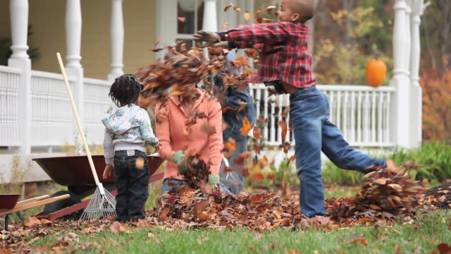 MS Family raking leaves, mother and son (6-7) throwing leaves at each other / Richmond, Virginia, USA.