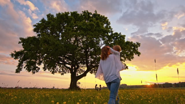 slo mo family relaxing in the nature at sunset - rope swing stock videos & royalty-free footage