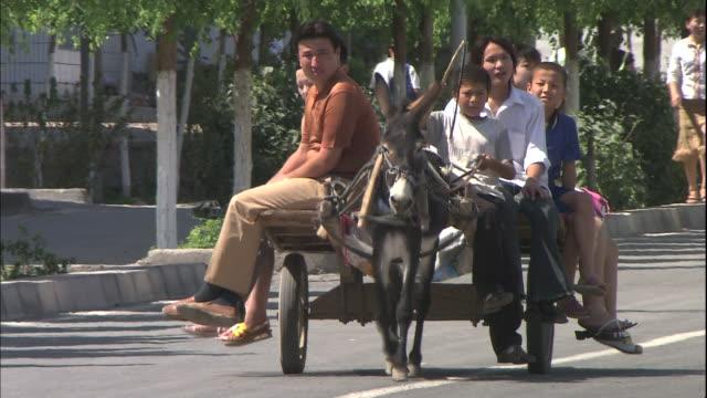 a family rides a donkey taxi in turpan xinjang uyghur autonomous region silk road china - esel stock-videos und b-roll-filmmaterial