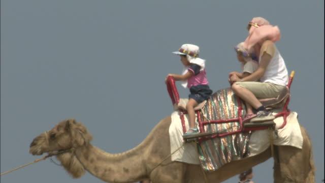 vídeos de stock, filmes e b-roll de family rides camel, japan - montar um animal