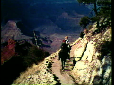 1953 ws family rides down the side of grand canyon on mules / az, usa / audio - mule stock videos & royalty-free footage