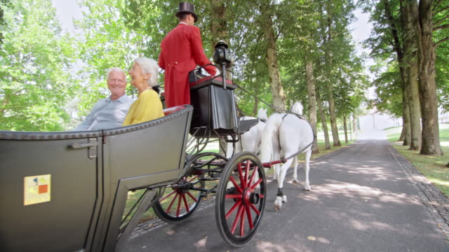 slo mo ts family riding in a horse carriage - horsedrawn stock videos & royalty-free footage