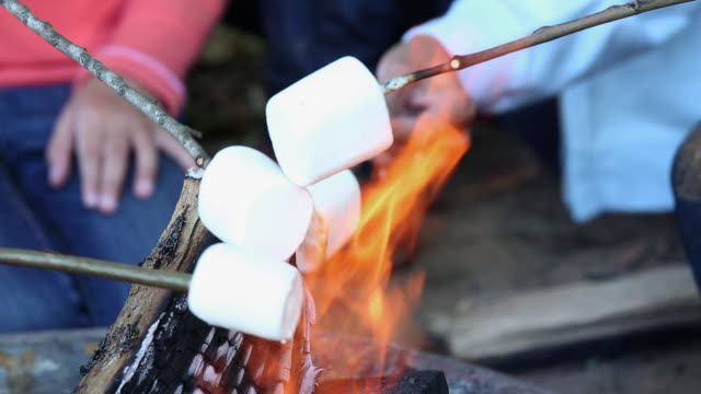 ecu family roasting marshmallows over camp fire / richmond, virginia, united states - ugnsstekt bildbanksvideor och videomaterial från bakom kulisserna