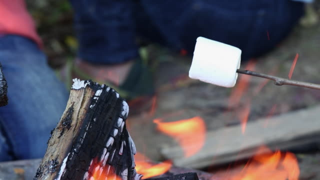 vídeos y material grabado en eventos de stock de ecu family roasting marshmallows over camp fire / richmond, virginia, united states - camping
