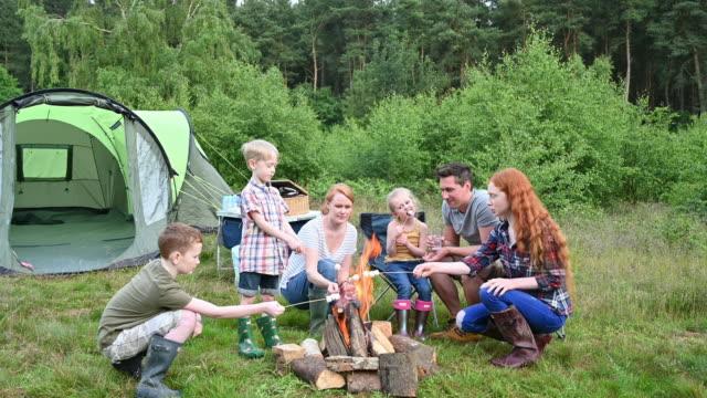vídeos de stock e filmes b-roll de family roasting marshmallows over open fire on camping trip - família com quatro filhos