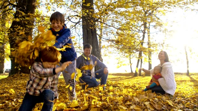 SLO MO Family scattering leaves over each other