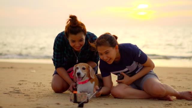 犬と家族の selfie - photographing点の映像素材/bロール
