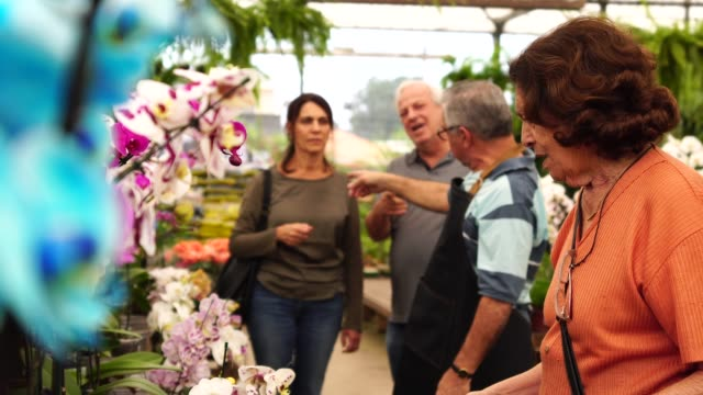 family shop for plants with salesman at flower market - formal garden stock videos & royalty-free footage