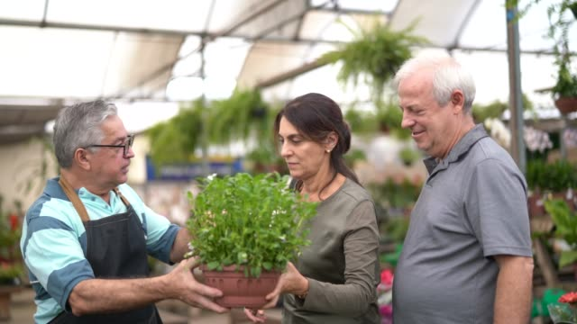 family shop for plants with salesman at flower market - fioraio negozio video stock e b–roll