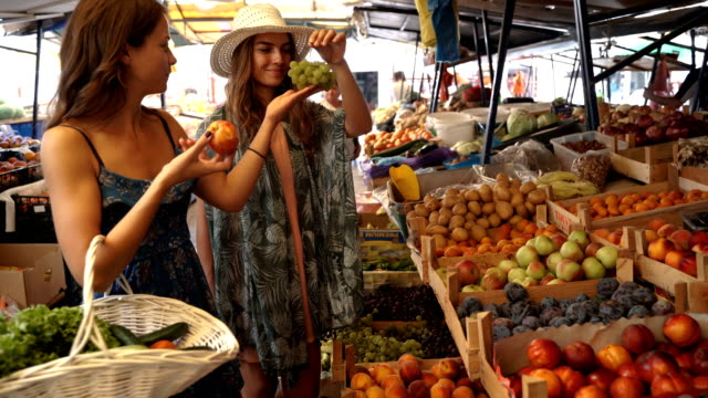 family shopping on the market place-sisters buying organic vegetables and fruits for vegetarian meal - market stall stock videos & royalty-free footage