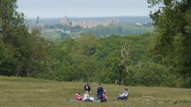 family sits on the grass in the spring sunshine in windsor great park with a picnic with windsor castle in the background on may 17, 2020 in... - windsor england stock videos & royalty-free footage