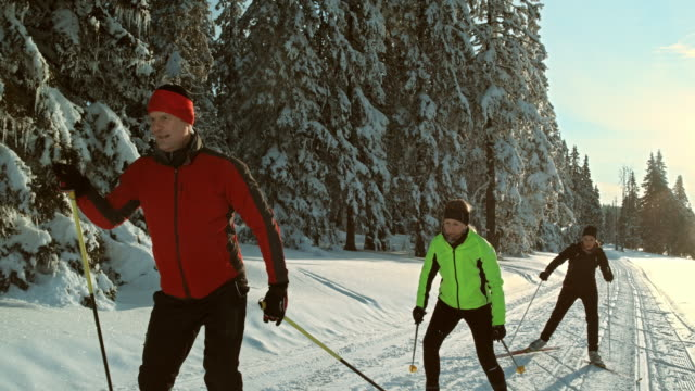 ts slo mo family skating auf cross country ski track - skifahren stock-videos und b-roll-filmmaterial