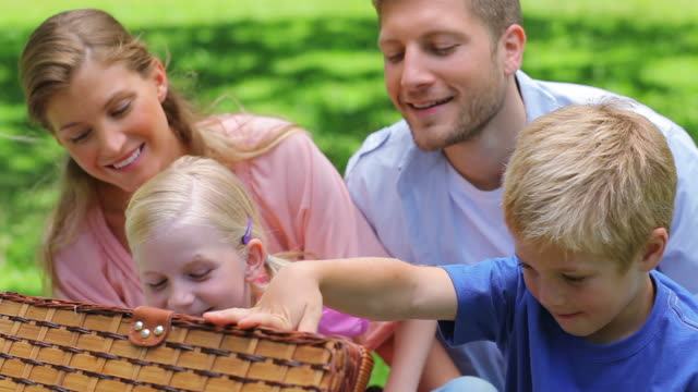 family looking into a picnic basket - picnic basket stock videos and b-roll footage