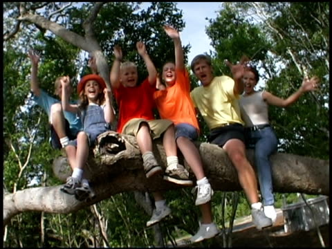family smiling in tree - family with four children stock videos & royalty-free footage