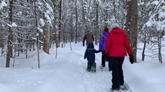 family snowshoeing after snowstorm in forest - warm clothing stock videos & royalty-free footage