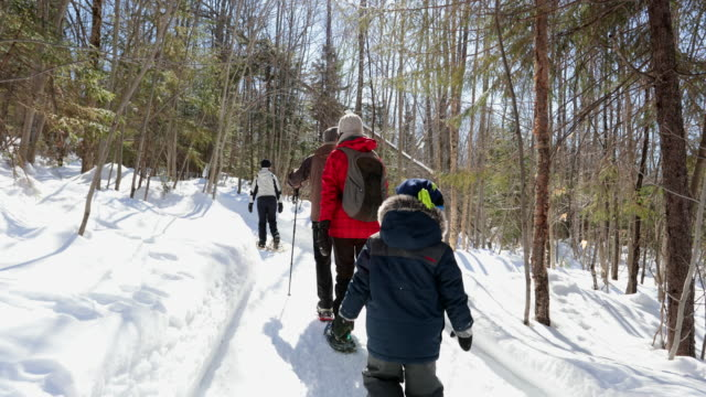 family snowshoeing outdoors in winter after snowstorm - family with one child stock videos & royalty-free footage