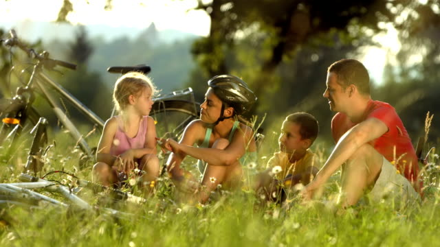 hd: family taking a break in the meadow - family with two children stock videos & royalty-free footage