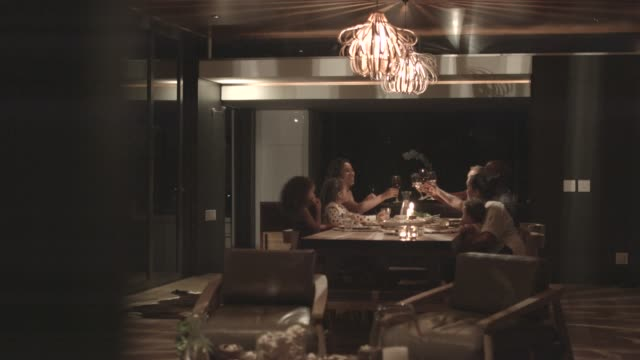 stockvideo's en b-roll-footage met family toasting drinks at home - avondmaaltijd
