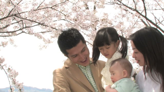 family under cherry blossoms - familie mit zwei kindern stock-videos und b-roll-filmmaterial