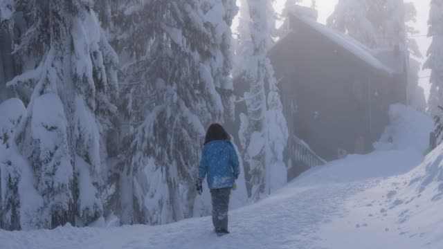 family walk along snowy path towards distant chalet - cappotto invernale video stock e b–roll