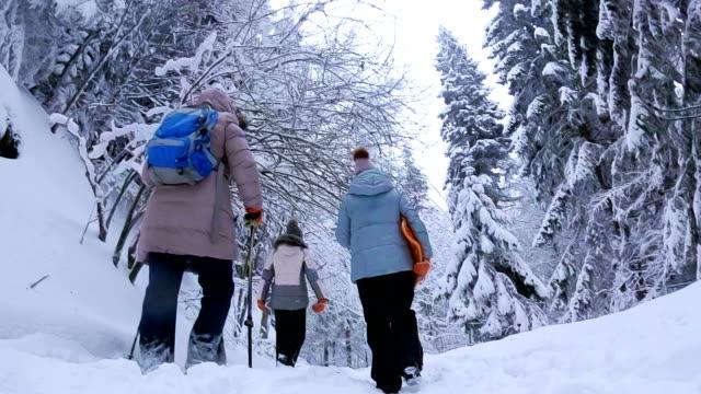 vidéos et rushes de famille, marche en forêt d'hiver neigeux - transylvanie