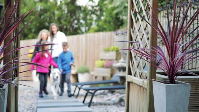 Family Walking Dogs