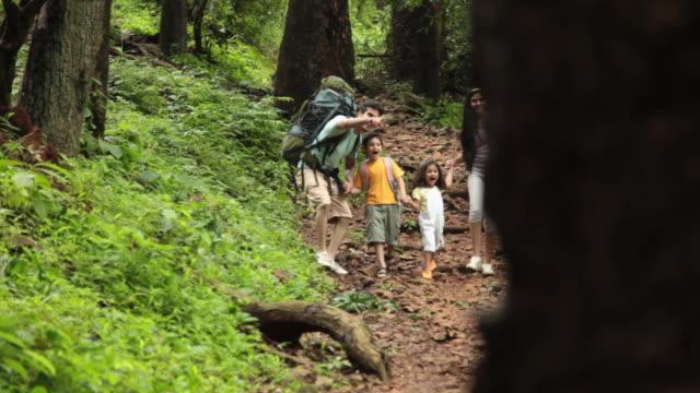 vidéos et rushes de family walking in a forest, malshej ghat, maharashtra, india - curiosité