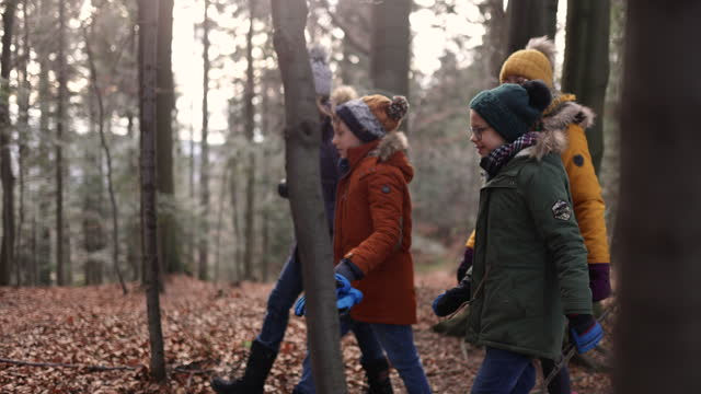 family walking in autumn forest - adventure stock videos & royalty-free footage