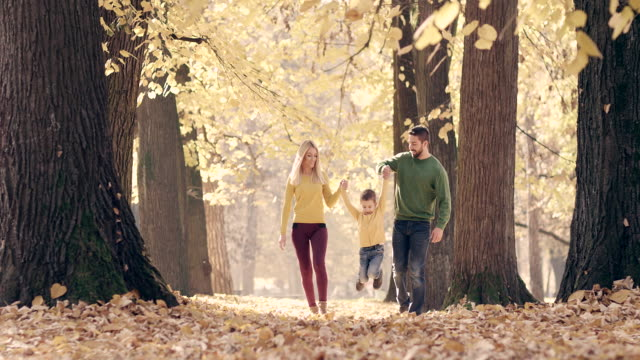family walking in the autumn park - young family stock videos & royalty-free footage