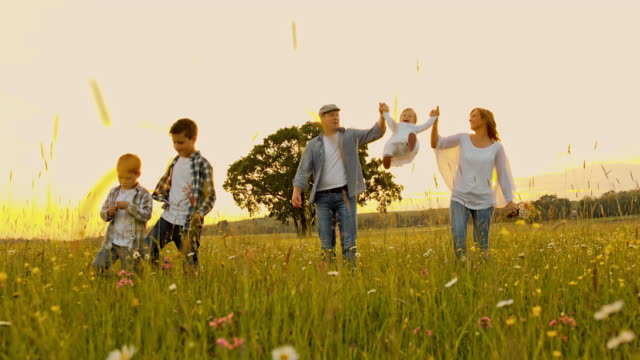 slo mo family walking in the grass - family with three children stock videos & royalty-free footage