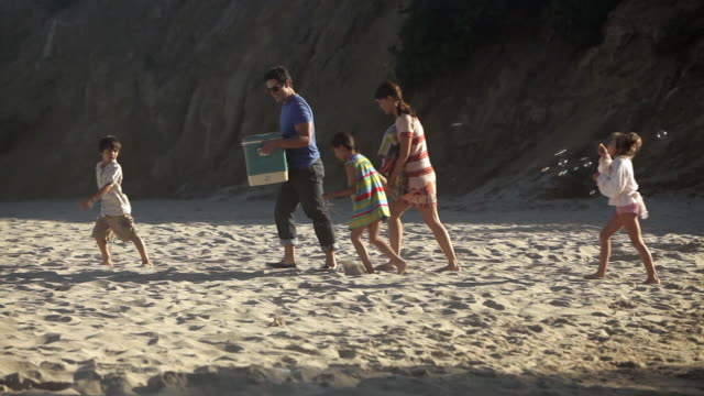 family walking on beach, father carrying coolbox - cool box stock videos and b-roll footage