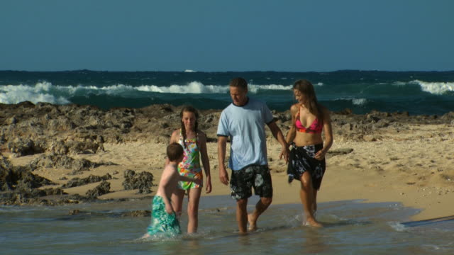 family walking on beach holding hands - see other clips from this shoot 1141 stock videos & royalty-free footage