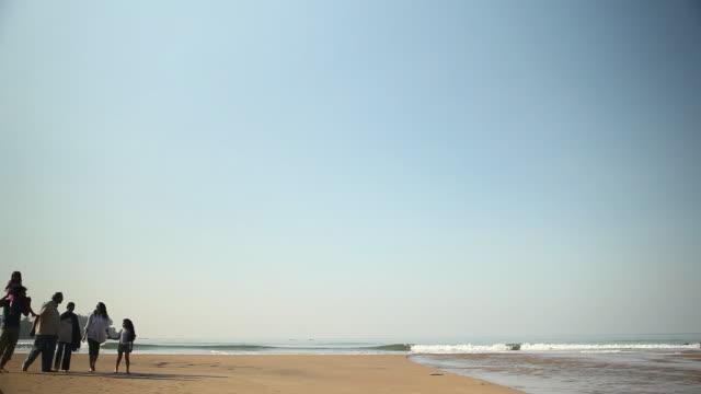 vídeos de stock e filmes b-roll de family walking on the beach - carregar uma pessoa nos ombros