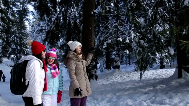 Family walking through amazing winter ambient on winter vacation