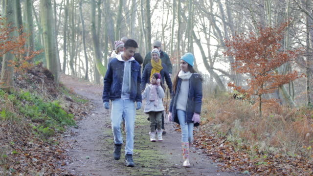 family walking through the forest - woolly hat stock videos and b-roll footage