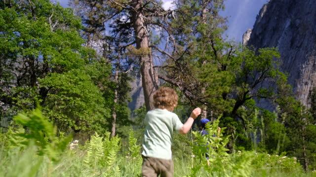 family walking yosemite national park, california, redwoods, sequoia, usa - sequoia national park stock videos & royalty-free footage