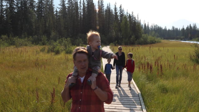 family walks along wooden boardwalk, above marsh - carrying on shoulders stock videos & royalty-free footage