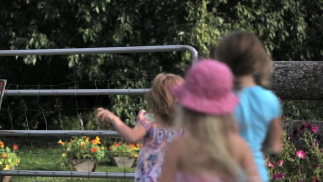family walks thru farm gate - 門点の映像素材/bロール