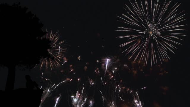 Famiglia guardando di fuoco d'artificio