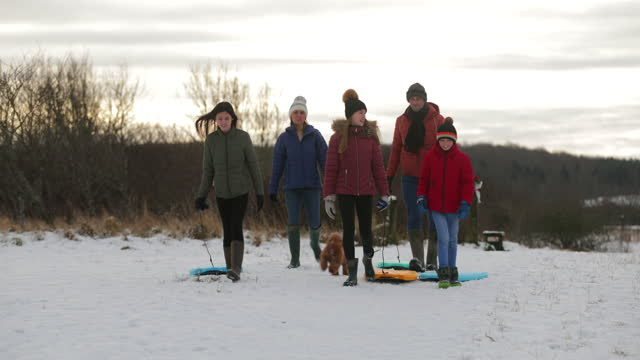 family winter walks - family with three children stock videos & royalty-free footage
