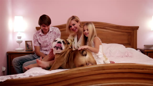 family with a dog in bedroom - reclining stock videos & royalty-free footage
