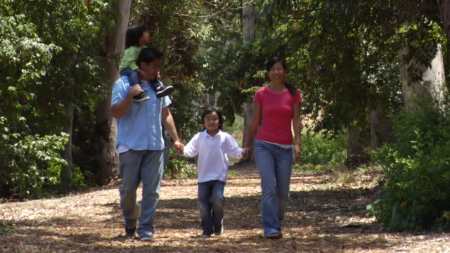 ms, ds, family with daughter (18-23 months) and son (6-7) walking on woodland trail, los angeles, california, usa - 18 23 months stock videos & royalty-free footage