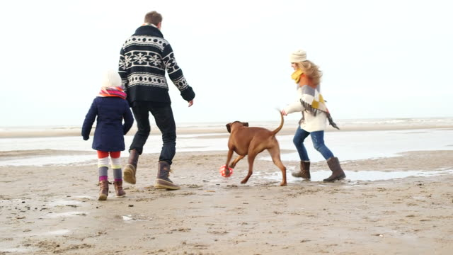 MS TS Family with dog playing football on beach