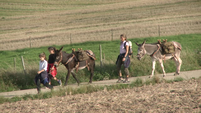 ws ts family with donkey at walking tour / mannebach, rhineland-palatinate, germany                             - newoutdoors stock videos & royalty-free footage