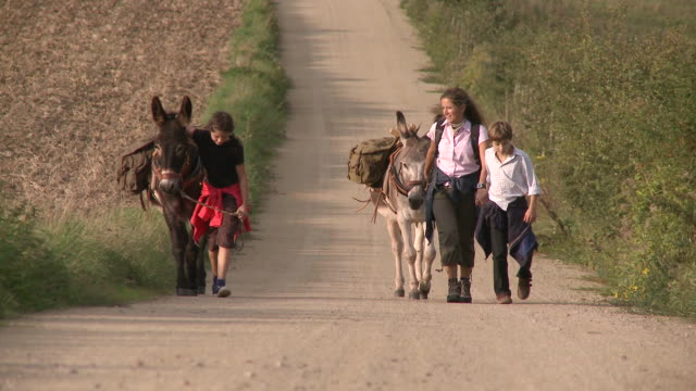 WS ZO Family with donkey at walking tour / Mannebach, Rhineland-Palatinate, Germany