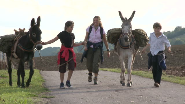 ws zo pan family with donkey at walking tour / mannebach, rhineland-palatinate, germany                             - donkey stock videos & royalty-free footage